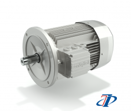BONFIGLIOLI - BE - HIGH EFFICENCY IE2 AC MOTORS